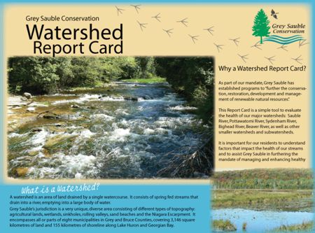 Watershed Report Card 2008