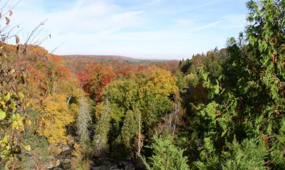 Inglis Falls Autumn Valley View