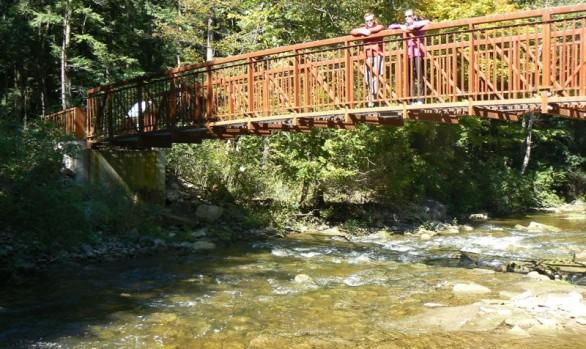 Arboretum Admin Centre Foot Bridge