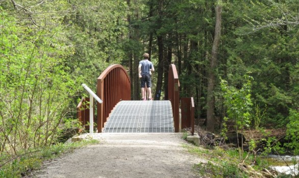 Arboretum Admin Centre Foot Bridge2