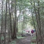 Bognor Marsh Hiking