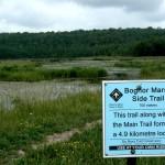 Bognor Marsh Sign