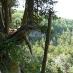 Eugenia Falls Escarpment