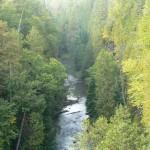Feversham Gorge Fall