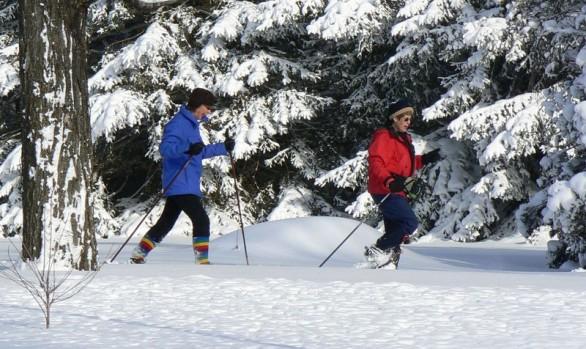 Massie Hills Skiing