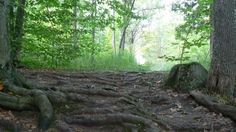 Spirit Rock Trail