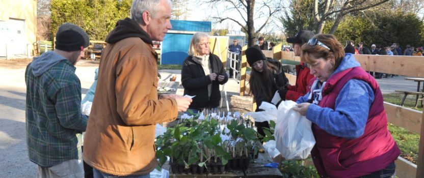April 29th – Annual Arbour Day Tree Sale – gets Bigger & Better