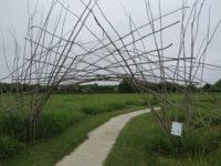 Arboretum Art