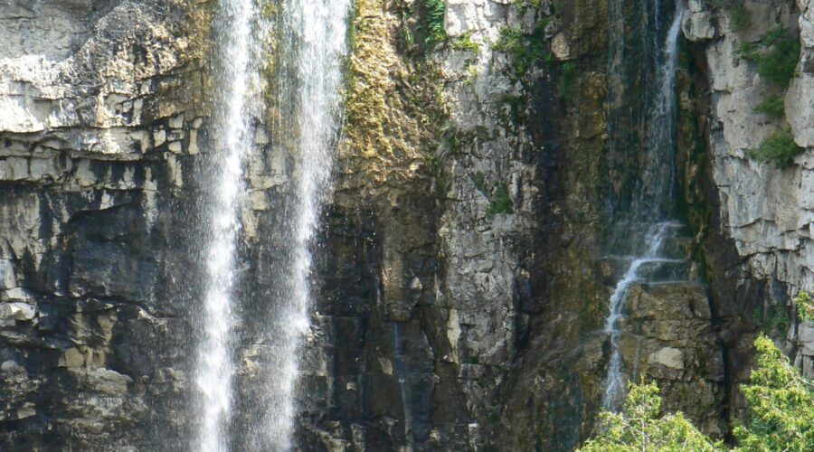 Submit your input for the Eugenia Falls Conservation Area Management Plan